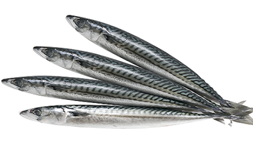 Cá Nục Nhật